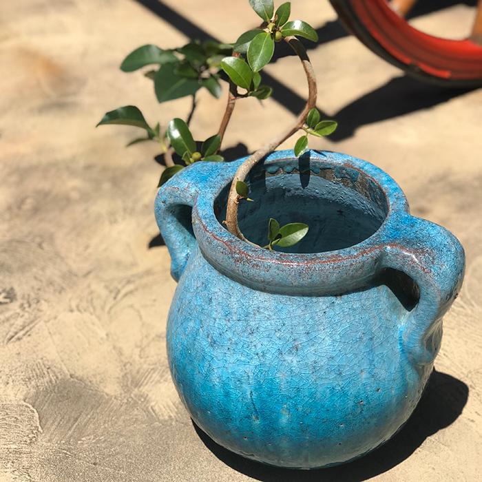 花瓶 ブルー XLサイズ 耳付き