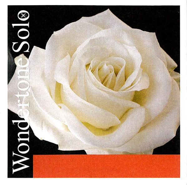 輝かしく倍音が多い弦 WondertoneSolo ワンダートーン ソロ バイオリン弦 アドバンストスチール お気にいる 1E 3152 即納 3156