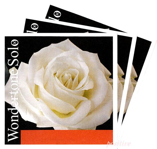 贈与 豊かな音に加え 力強さを持つ弦 WondertoneSolo ワンダートーン ソロ 4G セット 2A 3D 至高 バイオリン弦