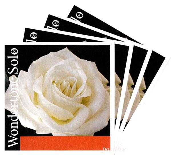 【WondertoneSolo】ワンダートーン ソロ バイオリン弦 セット(1E=シルバリースチール・3106/3103)
