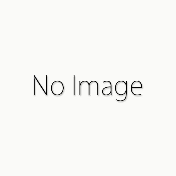 タナカ コルトパイソン .357マグナム 6インチ アールモデル スチールフィニッシュ モデルガン 4537212008945
