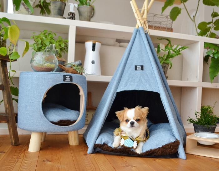 【ペットトイピーピーキャンディBL】ペットトイ 犬 おもちゃ 犬用おもちゃ dog ペット ペットグッズ キャンディ スイーツ おしゃれ かわいい ポタフルール
