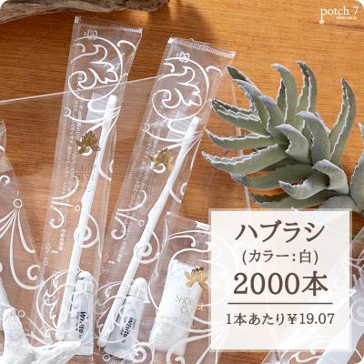 受注生産品 ハブラシ JS 白ハンドル 3gチューブ ロータスシリーズ 2000本 SB