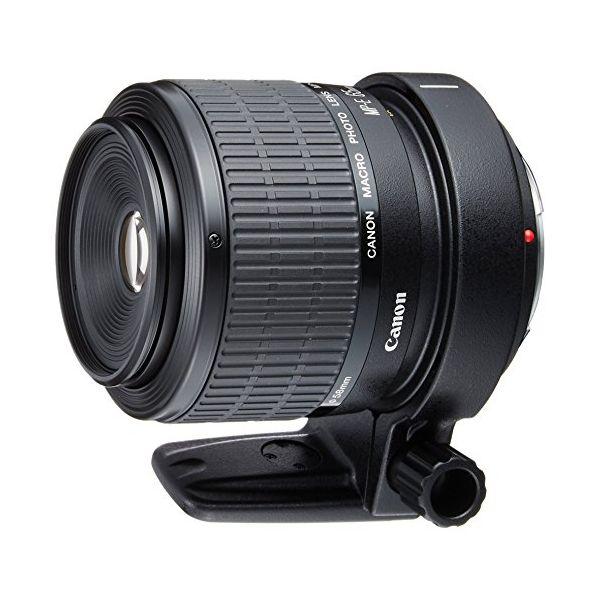 【中古】【1年保証】【美品】Canon MP-E 65mm F2.8 1-5X マクロフォト