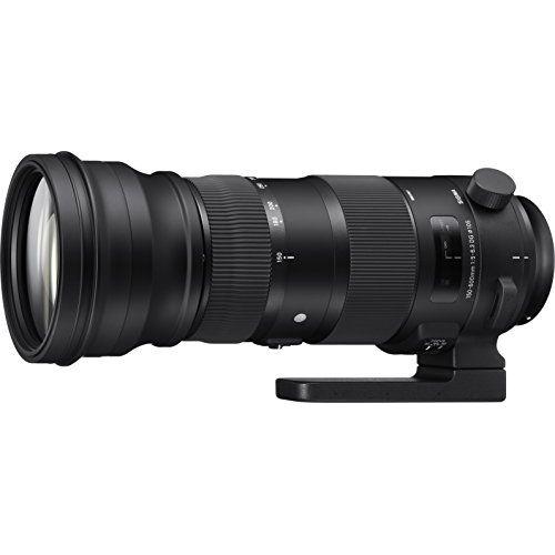 【中古】【1年保証】【美品】SIGMA Sports 150-600mm F5-6.3 DG OS HSM ニコン