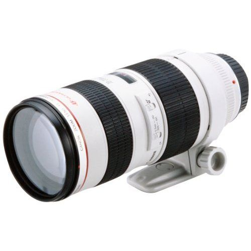 【中古】【1年保証】【美品】 Canon EF 70-200mm F2.8L USM
