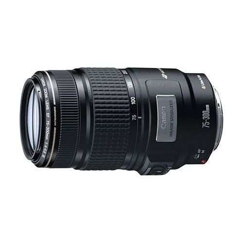 【中古】【1年保証】【美品】Canon EF 75-300mm F4-5.6 IS USM