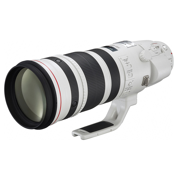 【送料無料】CANON EF200-400mm F4L IS USM エクステンダー 1.4× [超望遠ズームレンズ]