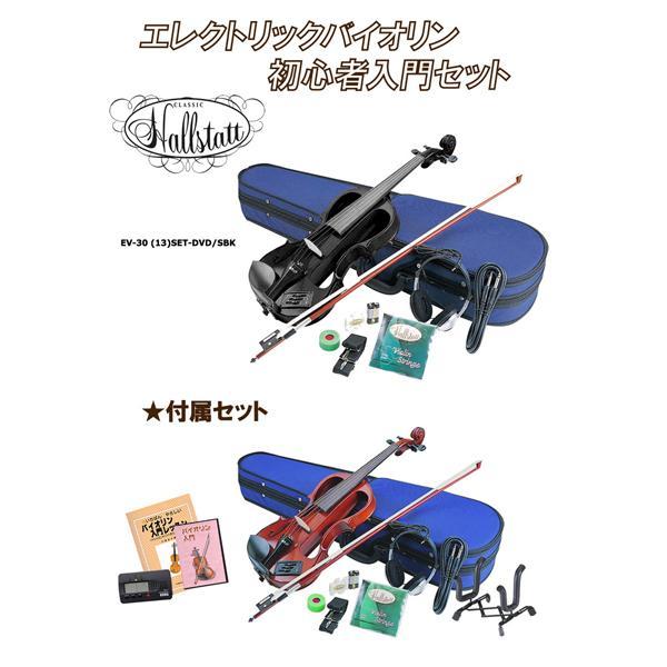 【送料無料】Hallstatt EV-30 (13)SET-DVD/SBK