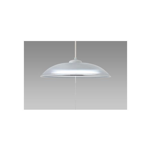 NEC HCDD1253-X [LEDペンダントライト(~12畳/昼光色) ]