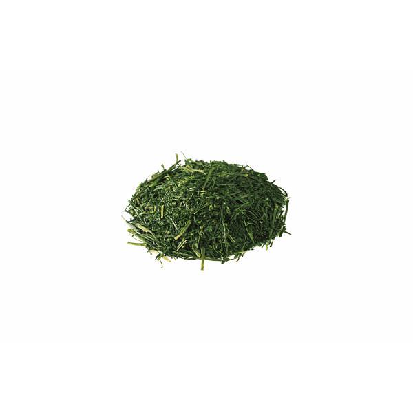 ツインバード お茶ひき器 緑茶美採 (GS-4671DG) [キャンセル・変更・返品不可]