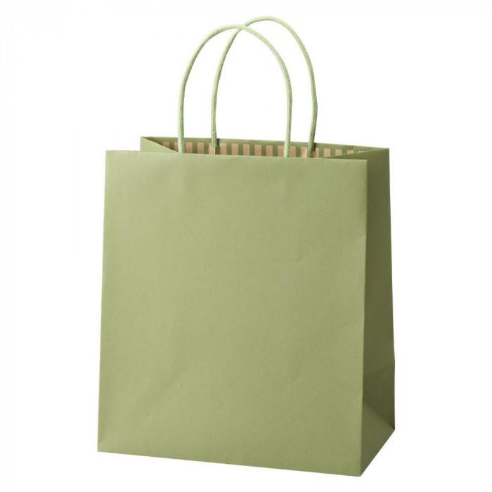 パックタケヤマ 手提袋 ST カラーズ グリーンティー 10枚×10包 XZT68307 [ラッピング不可][代引不可][同梱不可]