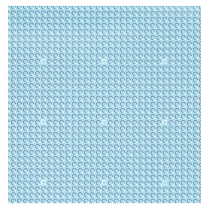 パックタケヤマ 包装紙 No.509 四六全判 100枚組 XZK00235 [ラッピング不可][代引不可][同梱不可]