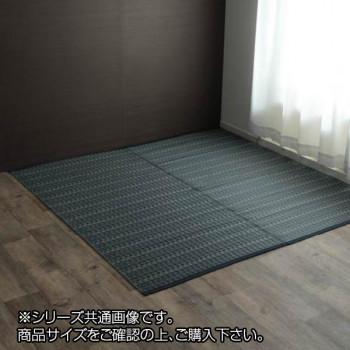 洗える PPカーペット 『バルカン』 本間6畳(約286×382cm) ネイビー 2126516 [ラッピング不可][代引不可][同梱不可]