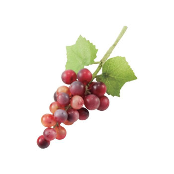 ガーデニング ミニグレープX24 ワイン 24ヶセット T0316 アレンジメント [ラッピング不可][代引不可][同梱不可]