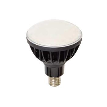 L50V2-J110BK-50K LED交換球 ハイスペック エコビック 50W 14160