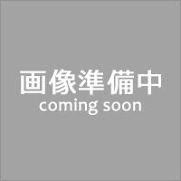 ボトムボーダー保冷ショッピングバッグ ネイビー (2879) [キャンセル・変更・返品不可]