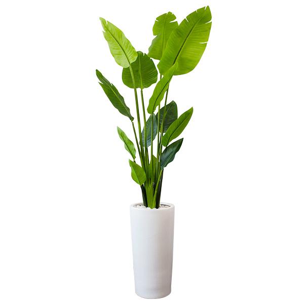 フェイクグリーン 人工観葉植物 造花 大型 ストレチア ウッドチップ プランターH50 GREENPARK | 観葉植物 観葉 植物 人工 人工植物 インテリアグリーン インテリア フェイク グリーン アーティフィシャルグリーン おしゃれ プランター イミテーショングリーン