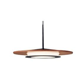 大光電機LEDペンダントDXL81102