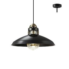大光電機LEDペンダント(非調光型) DPN40269Y