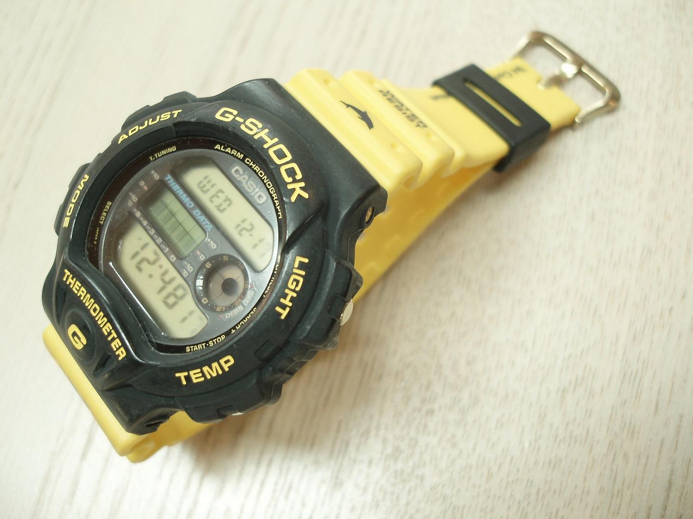 G-SHOCK DW-6100DW-9(第4回イルカクジラ会議モデル)【中古品】
