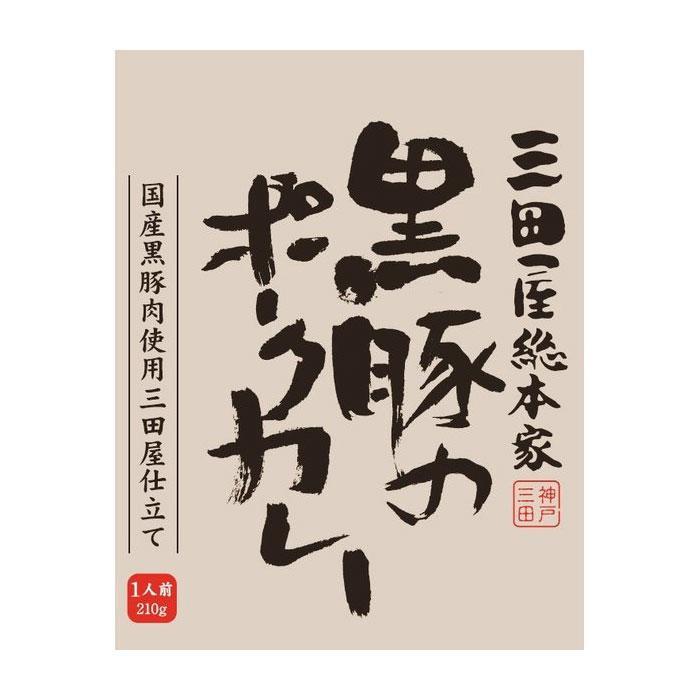 【クーポンあり】【送料無料】三田屋総本家 黒豚のポークカレー 210g×20入