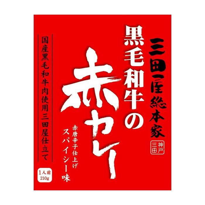 【クーポンあり】【送料無料】三田屋総本家 黒毛和牛の赤カレー 210g×20入