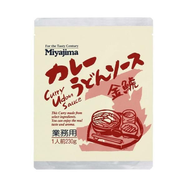 【クーポンあり】【送料無料】宮島醤油 カレーうどんソース金鯱 230g×40袋 500190