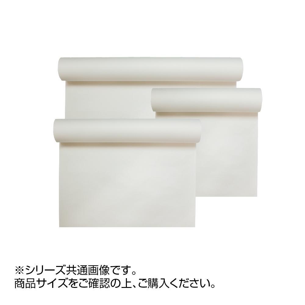 【クーポンあり】【送料無料】絹本 白 53×227cm CD11-3