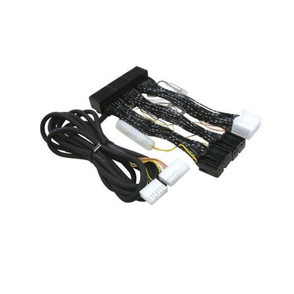 【クーポンあり】【送料無料】データシステム エアサスコントローラー専用ハーネス シーマ/インフィニティQ45・プレジデント/プレジデントJS用 H-079 エアサスコントローラー専用ハーネス。
