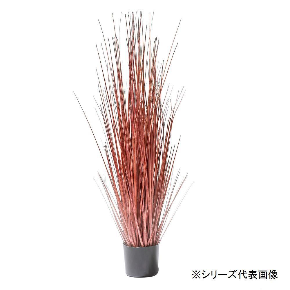【送料無料】人工観葉植物 レッドグラス L 約140cm 158011900 お部屋のインテリアに。