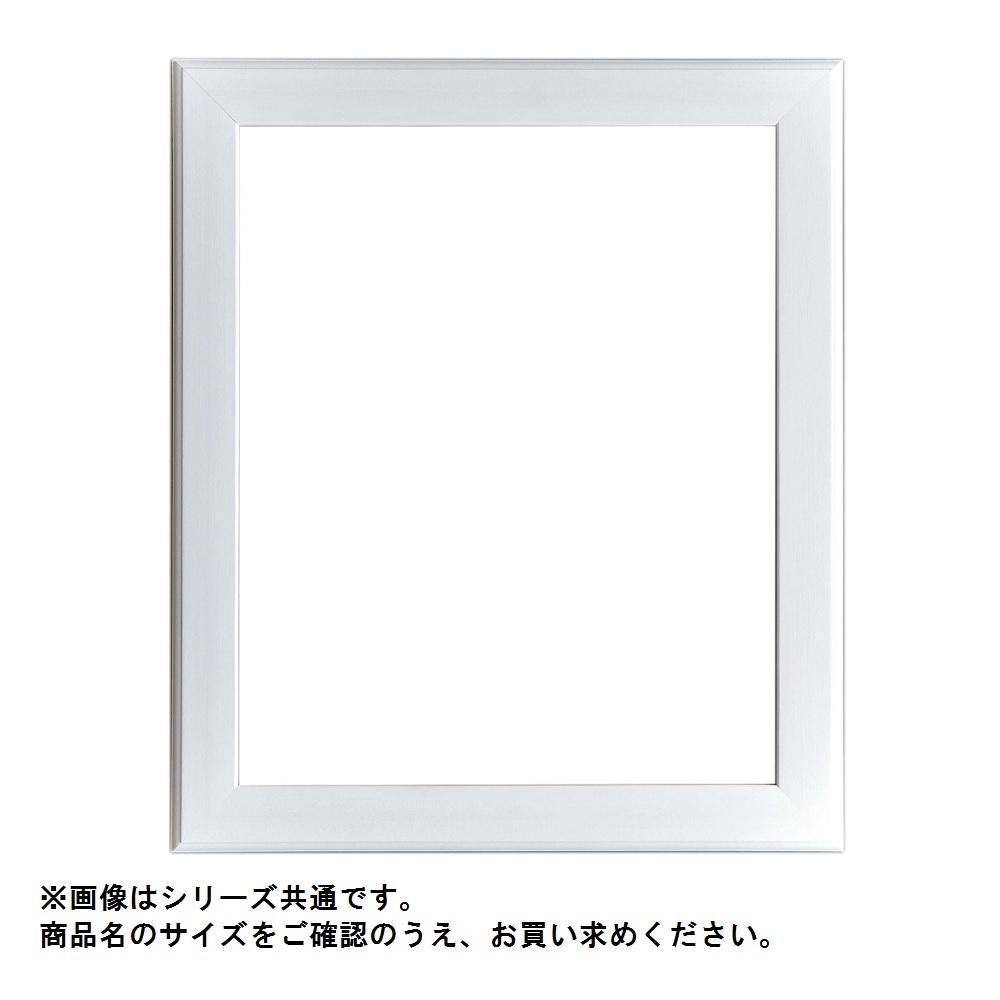 【クーポンあり】【送料無料】アルナ 樹脂フレーム デッサン額 APS-01-W F6・61902 存在感のあるフレーム☆