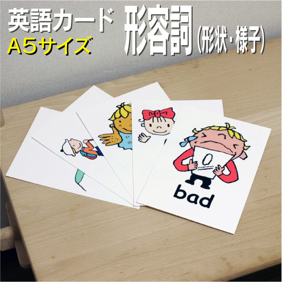 Flash card (infant) English card ■ A5 size ■ English teaching materials  learning English word education pronunciation child Elementary School