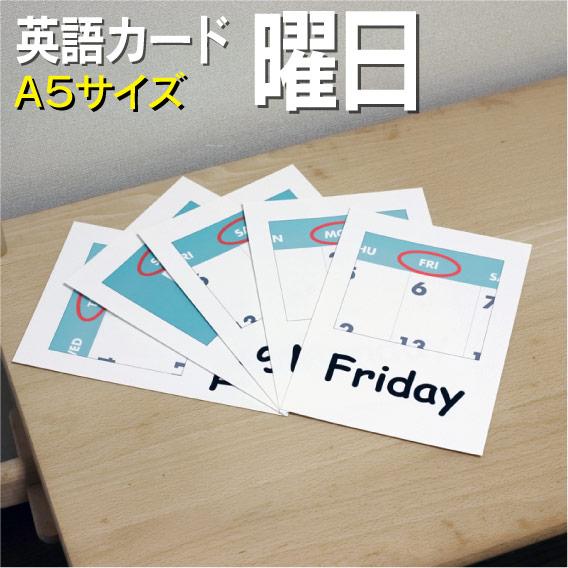 送料無料のフラッシュカード フラッシュカード えらべる 英語 大好評です カード 曜日 おすすめ特集 ■A5 ラミネート加工■