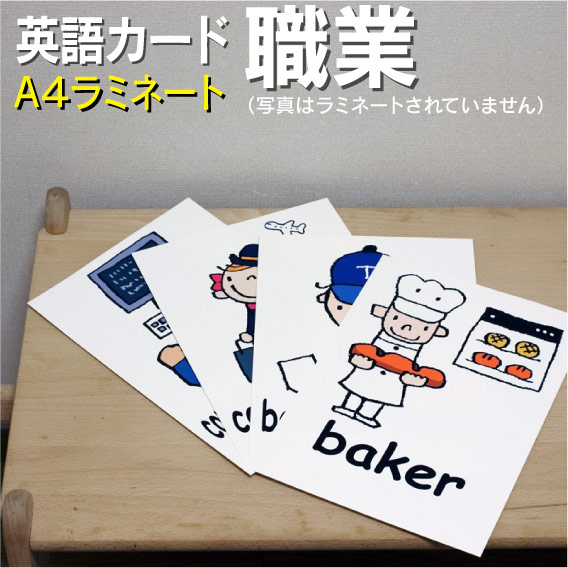 Flash Card Infant English Card A4 Size Laminating Processing English Teaching Materials Learning English Word Education Pronunciation Child