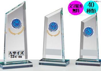 ブロンズ トロフィー 23cm:重量790g40種目も選べるブロンズ トロフィーです 商品追加値下げ在庫復活 レベルの高いコンテストによく使われています クリスタルブロンズ 選べるガラストップ 23cm 送料無料 在庫限り 文字彫刻無料