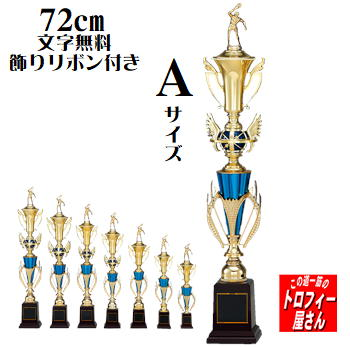 トロフィー 72cm:重量710g手頃なサイズのトロフィーです 個人賞や卒団記念によく使われています 72cm 人気の定番:T8817シリーズ 文字代無料 希少 送料無料 希望者のみラッピング無料 リボン代無料