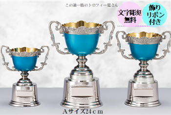 優勝カップ(24cm)【送料無料:AC9403A】★文字彫刻無料★リボン代込★【高級色彩カップ】