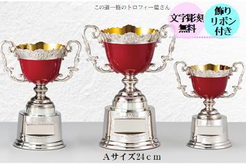 優勝カップ(24cm)【送料無料:AC9507A】★文字彫刻無料★リボン代込★【高級色彩カップ】