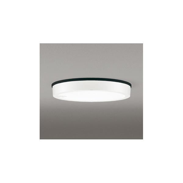 最上の品質な (代引不可)オーデリック OG254813 LED(昼白色) 軒下用シーリングライト LED(昼白色) センサー付 (A) センサー付 (A), CASACASA カーサカーサ:aacda2e1 --- hortafacil.dominiotemporario.com