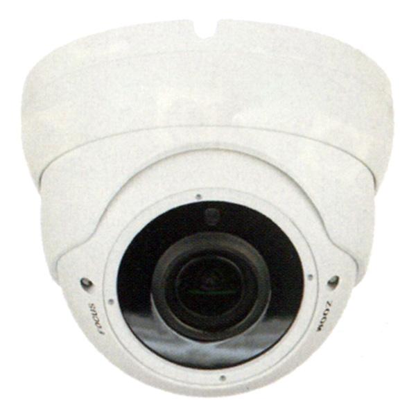 (送料無料(一部地域除く)・代引不可)DAITOKU(ダイトク) グランシールド ドーム型可動レンズセキュリティーカメラ QDA-2125 (L)