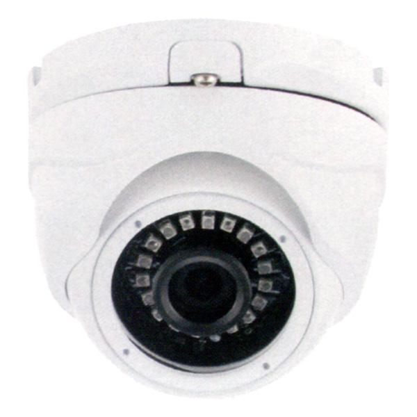 (送料無料(一部地域除く)・代引不可)DAITOKU(ダイトク) グランシールド ドーム型固定レンズセキュリティーカメラ QDF-2112 (L)