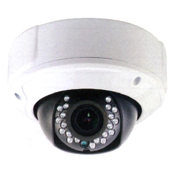 (送料無料(一部地域除く)・代引不可)DAITOKU(ダイトク) グランシールド 屋外用完全防水ドーム型可動レンズセキュリティーカメラ QDV-2116 (L)