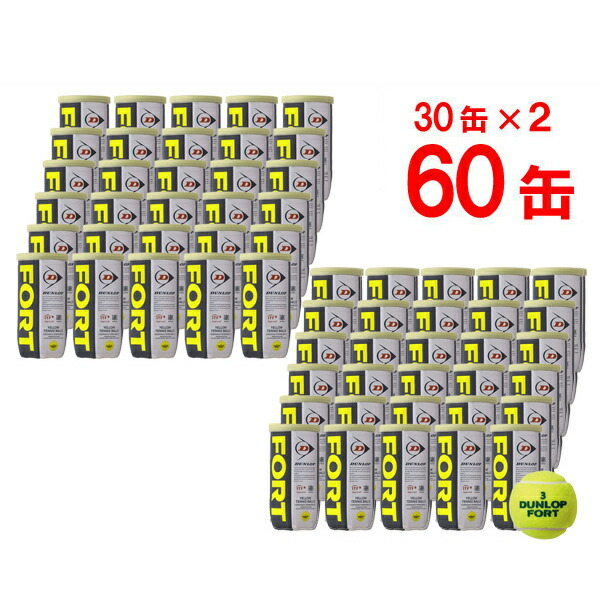 DUNLOP(ダンロップ)FORT(フォート)[2個入]2箱セット(30缶×2=120球)テニスボール