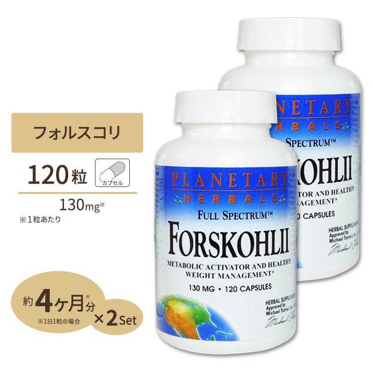 [2個セット][お得サイズ]フォルスコリエキス(フォースリーン フォースコリン20%)130mg 120粒 [送料無料]