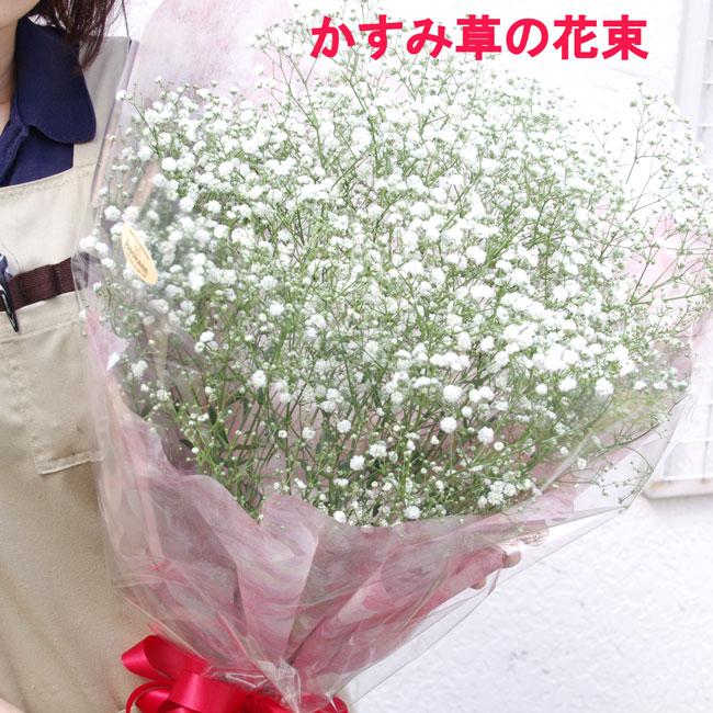 かすみ草の花束お誕生日プレゼントにぴったり プレゼント ギフト 写真 かすみ草 カスミソウ オンラインショッピング ボリュームいっぱい 誕生日 母の日 花束 Seasonal Wrap入荷
