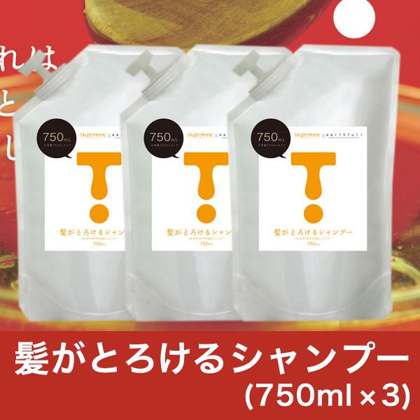 まとめ買い特価!髪がとろけるシャンプー ノンシリコン 750ml×3 泡パックも出来る専用美容液!大容量 洗浄成分70%シルク&コラーゲン♪サロン級 シャンプー 高レビュー