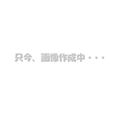 【10%OFFクーポン配布中!3980円で送料無料!】プライア -SS ストレートアイロン