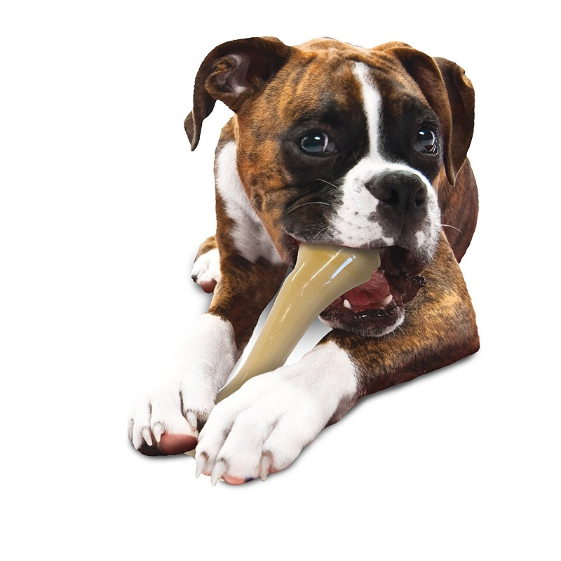 Nylabone(ナイラボーン) 歯磨きおもちゃ BIGサイズ 大型犬用 チキンフレーバー [並行輸入品]