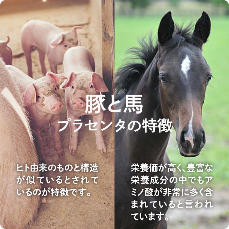 【楽天市場】JBP 日本生物製剤 プラセンタ サプリ MDポーサイン ...